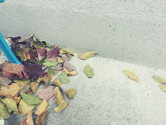 庭 落ち葉 掃除 舞い込み 侵入 流入 対策 吹きだまり