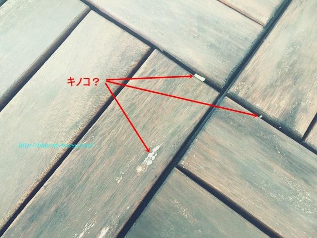 IKEA イケア RUNNEN PLATTA フロアデッキ ウッド デッキ パネル タイル フロア ベランダ ジョイント 屋外用 劣化 経年 変化 補修 きのこ キノコ 茸 劣化の様子 白いキノコ