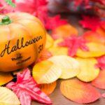 家デコ『ハロウィン2017』AWESOME STOREのフェルトアイテムとカラフルなトウガラシ