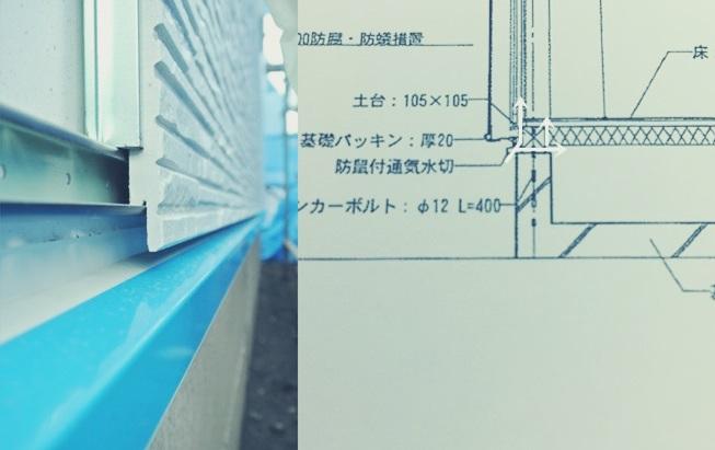 アリ 蟻 室内 部屋 家 中 侵入 隙間 経路 矩計 図 水切 基礎 サイディング 耐力面材 施工中 通気
