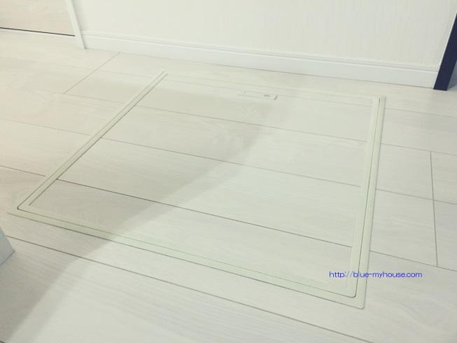 床下 収納 庫 入口 点検 もぐる 基礎 断熱材 掃除 アリ 蟻 ゴキブリ シロアリ 浸水 侵入 経路 駆除 殺虫 防止