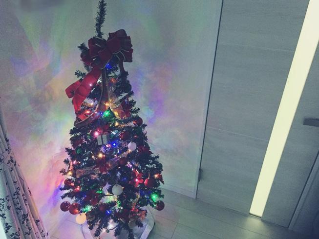 クリスマス デコレーション イエデコ ヘヤデコ ニワデコ クリスマスツリー 夜 点灯