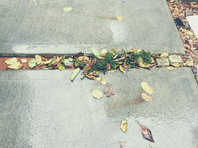 庭 落ち葉 掃除 舞い込み 侵入 流入 対策 絡まる