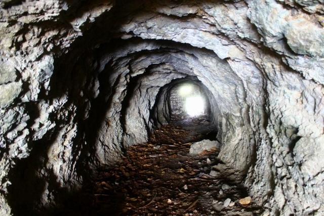 床下 点検 もぐる 基礎 収納 断熱材 掃除 アリ 蟻 ゴキブリ シロアリ 浸水 侵入 経路 駆除 殺虫 防止