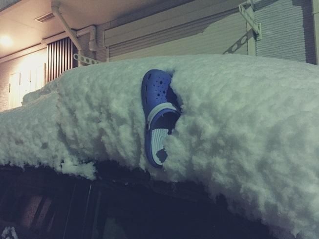 2018年 1月 22日 東京 関東 大雪 積雪 量