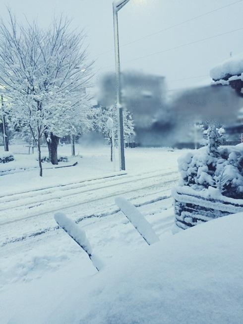 2018年 1月 22日 東京 関東 大雪 積雪